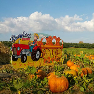 You Pick at Baugher's Farms is one of many activities for your family. Enjoy a great day in the country and visit often!
