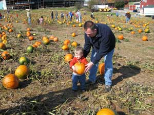 Take a trip to our pumpkin patches to pick out the perfect pumpkin.